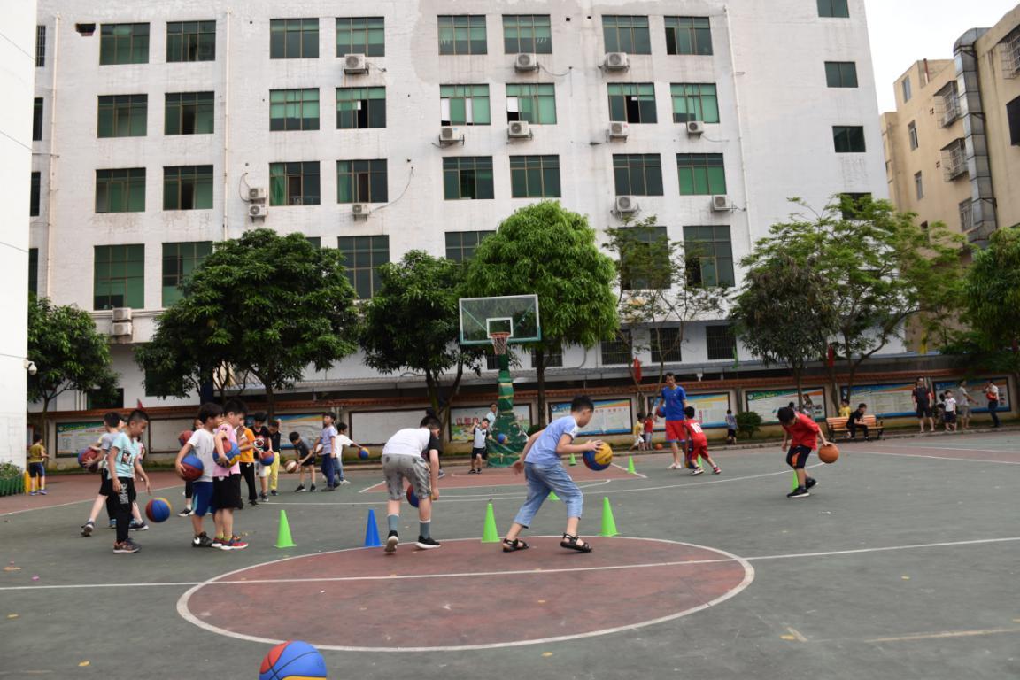 规范de篮球训练